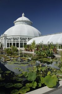 Botanical Garden in Bronx